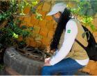 Com 2.695 casos de dengue Santa Maria recebe mutirão de combate ao mosquito
