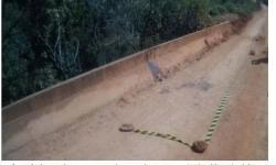 Corpo de jovem de 19 anos é encontrado decapitado em córrego no DF