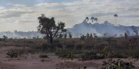 Grande incêndio atinge área rural de Santa Maria