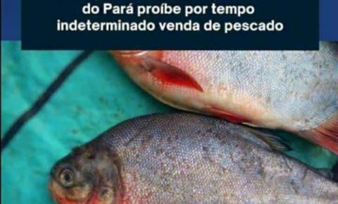 """""""Doença da urina preta"""", com mais de 40 casos no Amazonas"""