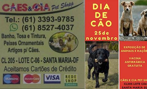 A CÃES & CIA promove um dia de cão em Santa Maria