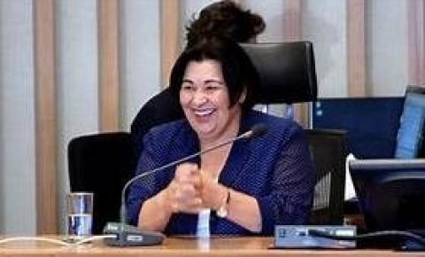 Luzia De Paula Se Prepara Para Assumir Vaga De José Gomes Na CLDF