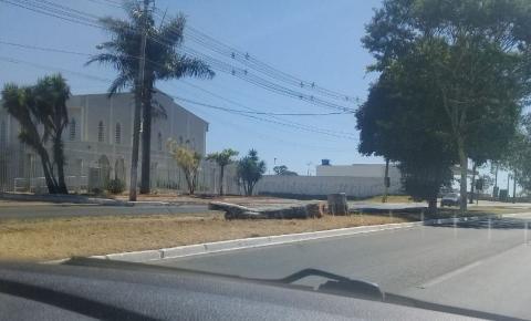Tronco de árvore derrubada ao lado da ciclovia, não é removido pela administração regional.