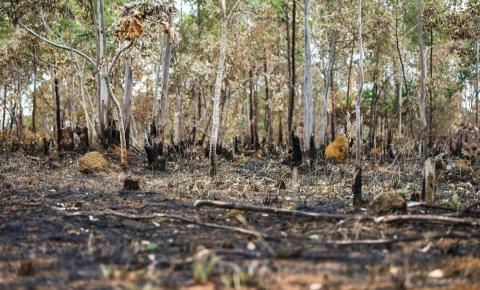 Planalto confirma que queimadas são criminosas