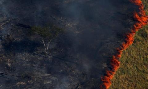 Veja tudo o que se sabe até o momento sobre as queimadas na Amazônia
