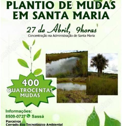 Mutirão para o plantio de 400 mudas de árvore em Santa Maria